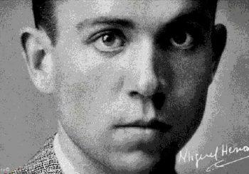 """Premio Novel de Poesía """"CÁTEDRA MIGUEL HERNÁNDEZ"""""""